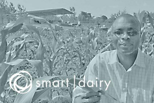smartdairy-for-blog-2